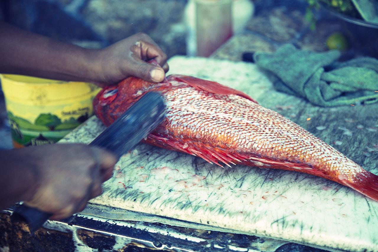 Popotla Fishing Village, Mexico, descaling fish