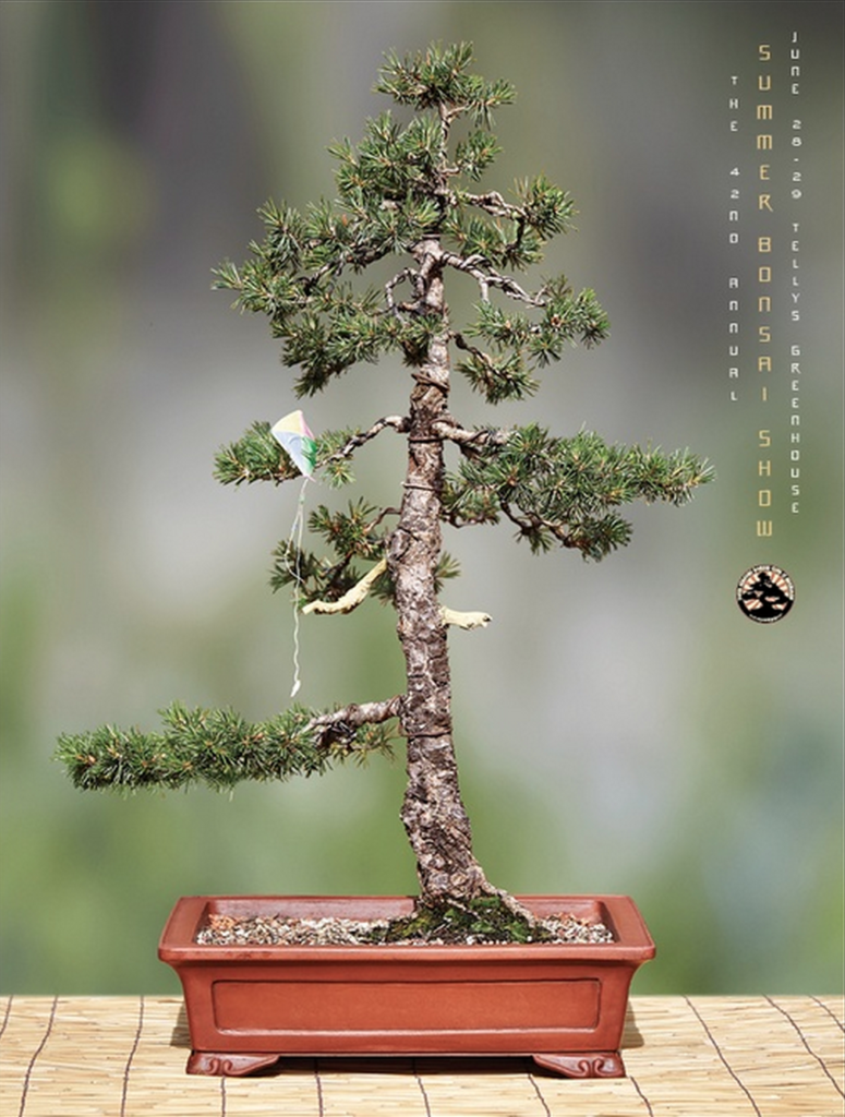 Graphis' Advertising Annual Silver Award with McCann Worldgroup Bonsai